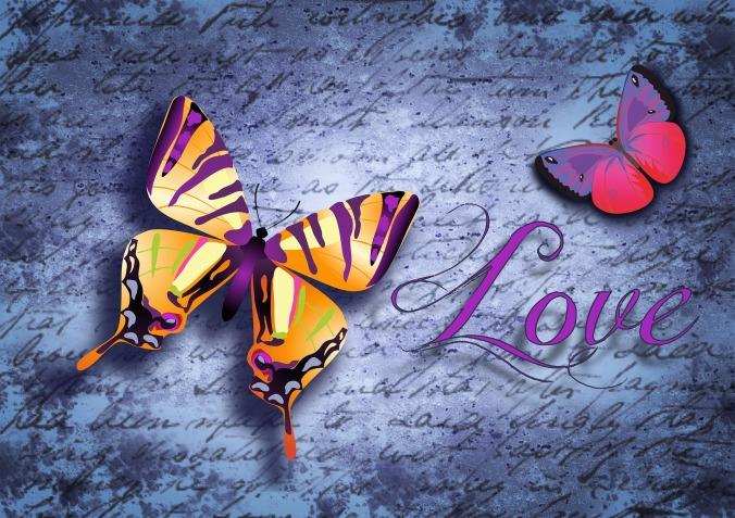 butterfly-888503_1920
